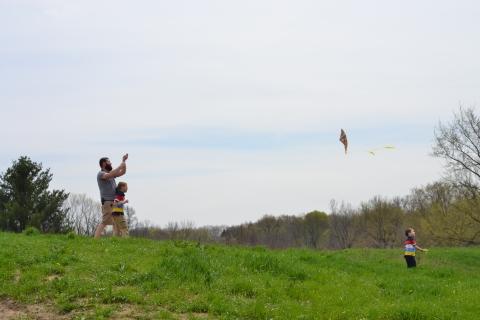 fly a kite (5)